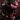 gaura – apulia plants